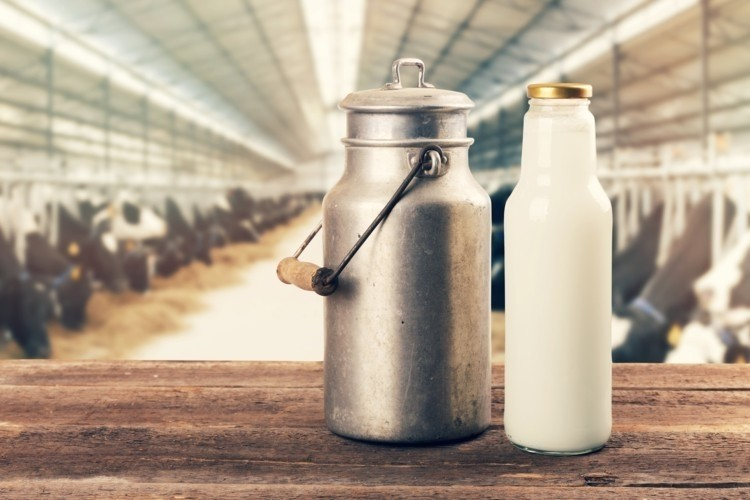 milk in India unsafe for human consumption