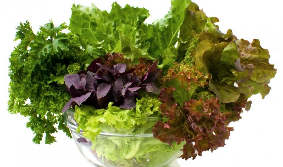 Miracle Foods For Weight Loss